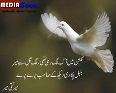 Poetry Mediazoon: MEER TAQI MEER SAHIB – The best and classical poetry for the humor of every one. See all the poetry.............................