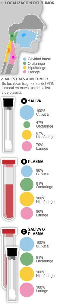 Una muestra de sangre y saliva para detectar tumores de cabeza y cuello | Salud | EL MUNDO