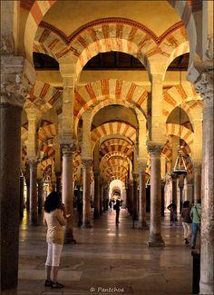 Córdoba : La Mezquita : Forest of pillars  Spain