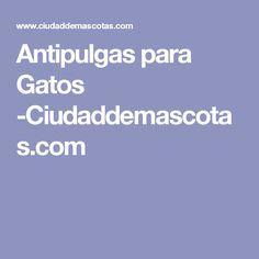Antipulgas para Gatos -Ciudaddemascotas.com