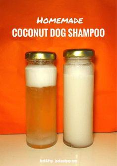 Homemade Coconut Oil Dog Shampoo Alternative! #DIY