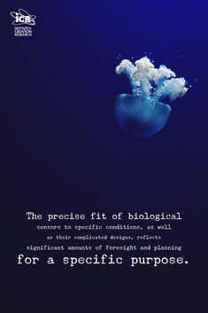 The precise fit of biological sensors to specific conditions, as well as their complicated designs, reflects significant amounts of foresight and planning for a specific purpose.  Engineered Adaptability: Sensor Triggers Affirm Intelligently Designed Internalism: http://www.icr.org/article/engineered-adaptability-sensor-triggers  #Engineering #Design