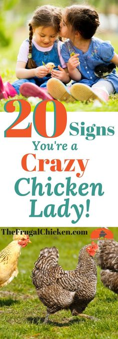 Got chickens? Maybe too many chickens? If you've fallen in love with your backyard flock, you just might be a crazy chicken lady. Here's 20 signs you've stepped over to the chicken side!