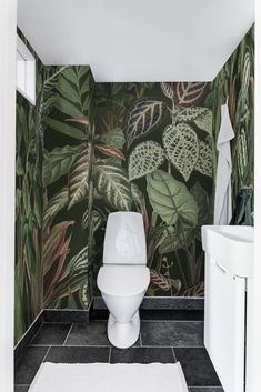 Wallpaper Toilet, Wallpaper Ceiling, Room Wallpaper, Tropical Toilets, Tropical Bathroom, Small Toilet Room, Small Space Bathroom, Small Spaces, Monkey Wallpaper
