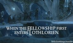 When the Fellowship first enters Lothlorien.
