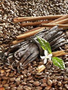 Coffee Beans, Vanilla Pods and Cinnamon Sticks Photographic Print