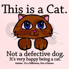 This is a Cat. Not a defective dog. It's very happy being a cat. #Autism: It's a Difference, Not a Disease.