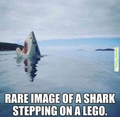 15 Hilarious Lego Memes We all Can Relate Too And Laugh At! - Food Meme - 15 Hilarious Lego Memes We all Can Relate Too And Laugh At! The post 15 Hilarious Lego Memes We all Can Relate Too And Laugh At! appeared first on Gag Dad. Crazy Funny Memes, Really Funny Memes, Funny Relatable Memes, Haha Funny, Funny Shit, Funniest Memes, Funny Stuff, Hilarious Memes, Funny Quotes