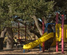 Free Fun in Austin: Shady Parks in and Around Austin