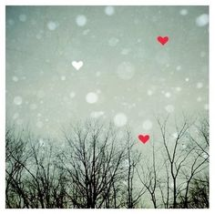 Image discovered by sweet gallery ^___^. Find images and videos about love, heart and winter on We Heart It - the app to get lost in what you love. I Love Heart, Key To My Heart, Heart Art, Valentine Day Love, Valentines, Christmas Hearts, Winter Wonder, Favim, Bokeh