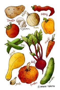 Digital watercolor v Watercolor Illustration, Watercolor Paintings, Watercolours, Pencil Drawings, Art Drawings, Vegetable Drawing, Recipe Drawing, Garden Journal, Food Drawing