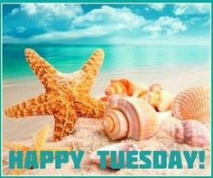 Every morning you have 2 choices, continue your sleep with dreams or WAKE UP and chase your dreams. CHOICE IS YOURS. Happy Tuesday #MedicinesMexico #Dreams #Tuesday #morning