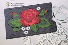 Layers, Rose, Layering, Pink, Roses, Pink Roses