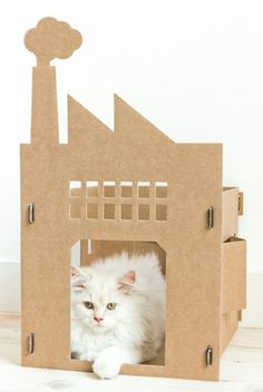 KEK Amsterdam | Cardboard Cribs for Cats