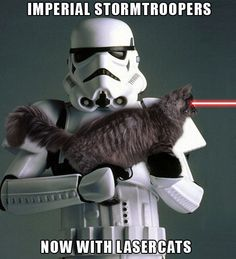 20 Of The Best Cat Wars Memes To Get You Ready For Star Wars - World's largest collection of cat memes and other animals Funny Cat Memes, Funny Cats, Funny Animals, Memes Humor, Hilarious, Adorable Animals, Stormtrooper, Darth Vader, Plus Tv