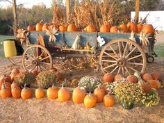 No Cost vintage pumpkin fields Harvest Time, Fall Harvest, Fall Wagon Decor, The Great Pumpkin Patch, Fall Photo Props, Pumpkin Field, Old Wagons, Vintage Fall, Vintage Decor