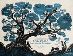 Learn The Root Of Each Language With This Linguistic Family Tree