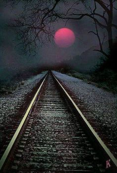 Peaceful shot of a railway. Though I could still see a horror movie being shot here!!