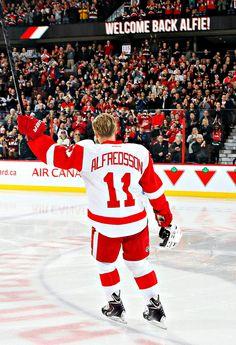 Daniel Alfredsson - Detroit Red Wings Hockey Teams, Hockey Players, Ice Hockey, Detroit Sports, Detroit Tigers, Detroit Red Wings, Daniel Alfredsson, Joe Louis Arena, Indiana Girl