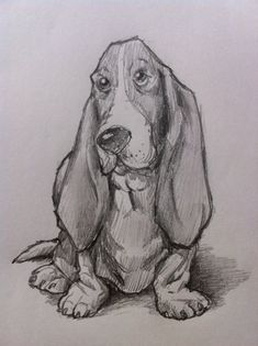 how to draw a Bassett Hound dog. Animal Sketches, Animal Drawings, Drawing Animals, Drawings Of Dogs, Drawing Faces, Dog Drawing Simple, Drawing Ideas, Drawing Lessons, Dog Sketch Easy