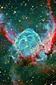 """Thor's Helmet Nebula. """"We are the cosmos made conscious and life is the means by which the universe understands itself. Cosmos, Hubble Space Telescope, Space And Astronomy, Nasa Space, Interstellar, Thor, Across The Universe, To Infinity And Beyond, Deep Space"""