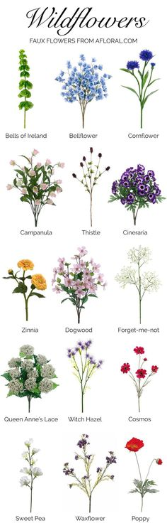 Thinking about using wildflowers for your wedding, but not sure what to choose? Here is a helpful list of wildflowers! Can you believe these are faux from afloral.com?! You can find these and more in our miscellaneous and unique wedding stems. #fauxflowers