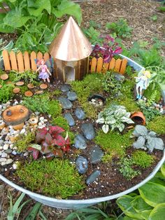 been wanting to make a fairy garden for several years now.  We had problems finding the right plants, but were finally able to find some this year.