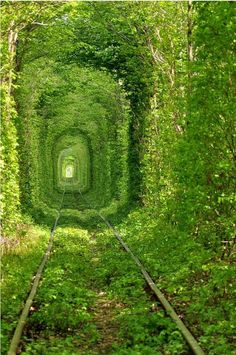 "from ""Amazing paths and places around the world"""