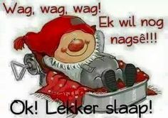 Ok, lekker slaap:-* Good Night Sleep Tight, Good Night Moon, Afrikaanse Quotes, Goeie Nag, Good Night Sweet Dreams, Good Night Quotes, Bowser, Projects To Try, Fictional Characters
