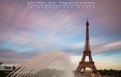 Un fotógrafo de Naturaleza en Paris I - Pinned by Mak Khalaf Qué hace un fotógrafo de naturaleza en vacaciones? Pues seguir disfrutando de la fotografía... pero en ciudad. http://ift.tt/1BzDizU Travel Parisarchitecturecitycityscapecloudseiffeleiffel towereuropefrancelucroitskytravelurbanwater by JavierAlonsoTorre