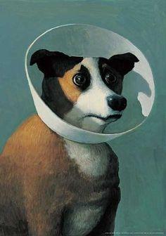 Filmhund Kunstdruck by Michael Sowa, Michael Sowa, Amelie, Framed Art Prints, Fine Art Prints, Dog Cone, New Fine Arts, Art Paintings For Sale, Acrylic Paintings, Sick Dog