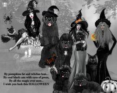 Halloween, Movie Posters, Movies, Art, 2016 Movies, Film Poster, Films, Popcorn Posters, Kunst
