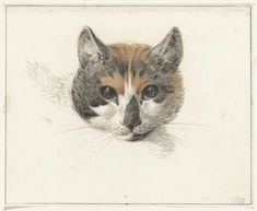 Jean Bernard (1775-1833, Dutch) was certainly a cat lover. A deft artist and draftsman he sketched many cats, most probably his own, using charcoal and....