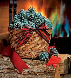 DIY Color-Changing Fireplace Pinecones: using a bucket of water, and household items for the 'flame colorant' (yellow-table salt, yellow-green' borax, white-epsom salts, green-boric acid, red- strontium chloride) and soak overnight. throw in your fire to change the flame's color. kids would be wowed!