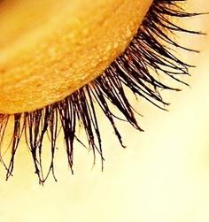 Yellow | Giallo | Jaune | Amarillo | Gul | Geel | Amarelo | イエロー | Kiiro | Colour | Texture | Style | Form | Pattern | eyelashes