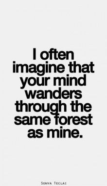 I often imagine that your mind wanders through the same forest as mine.
