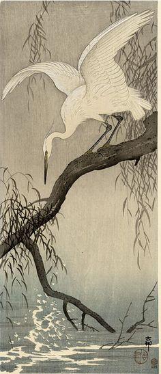 hanga gallery . . . torii gallery: Little Egret on Branch by Ohara Koson