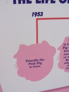 Rich's Pink Pig ~ Christmas Ride ~ only a little older than me :o)