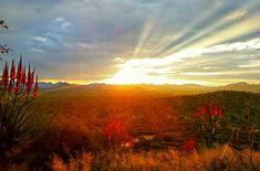 Probably the most impressive and inspiring sunset I have ever experienced @gocheganas #naturereserve  #namibia #gocheganas #tokobar #sunset #magicmoments