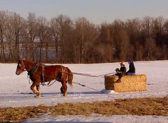 Riding the hay bale, in Southern Lancaster County, PA.