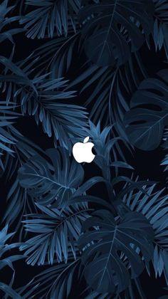 Apple Logo Wallpaper Iphone, Iphone Wallpaper Images, Iphone Homescreen Wallpaper, Abstract Iphone Wallpaper, Ios Wallpapers, Iphone Background Wallpaper, Aesthetic Iphone Wallpaper, Vintage Wallpaper, Iphone Hintegründe