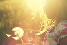 """I want to take a photo of my daughter like this because of the """"dandelion in the spring""""."""