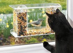 EVERY CAT OWNER SHOULD HAVE THIS!!! One-Way-Mirror Birdfeeder.  Suction cups easily affix it to the outside of your feline's favorite perch, and the one-way mirror means that hungry finches won't be deterred from snacking by the presence of a lurking predator behind the glass.