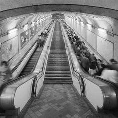 La escalera que une la estación de Noviciado con el vestíbulo de Plaza de España fue en su momento el tramo más largo de Europa. Hoy está dividido en varios tramos.