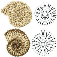 Ammonite crochet appliqué