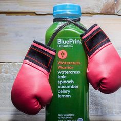 Get energized the organic way with blueprint tea infused energy get energized the organic way with blueprint tea infused energy drinks with superfood ingredients designed to boost mind body its a great alt malvernweather Image collections
