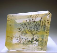 A really large, light yellow dendritic Quartz with beautiful, sharp, tree-like patterns.  The Quartz has good clarity and weighs 60.90 carats. From Brazil