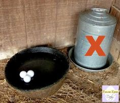 Five Easy Ways to Keep your Chickens' Water from Freezing this Winter