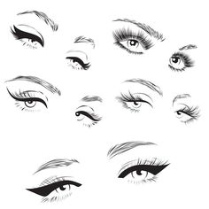 57b22f51fd7 Vector eyelashes collection on Behance #EyelashExtensionsCatEye False  Eyelashes, Eyelashes Drawing, Ardell Lashes,
