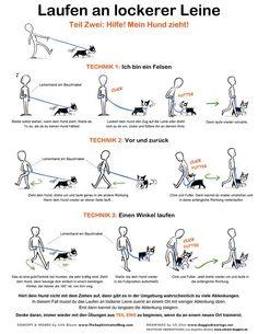 Useful Dog Obedience Training Tips – Dog Training Background Dog, Dog Hacks, Dog Training Tips, Potty Training, Pitbull Training, Puppy Leash Training, Training Classes, Dog Obedience Training, Training Collar